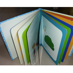 Custom Children Board Book Printing
